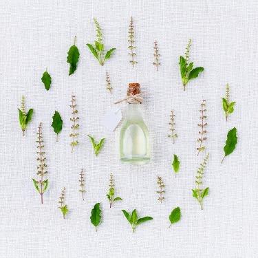 Aromatherapy Image herbs image.